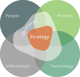 People process information technology diagram